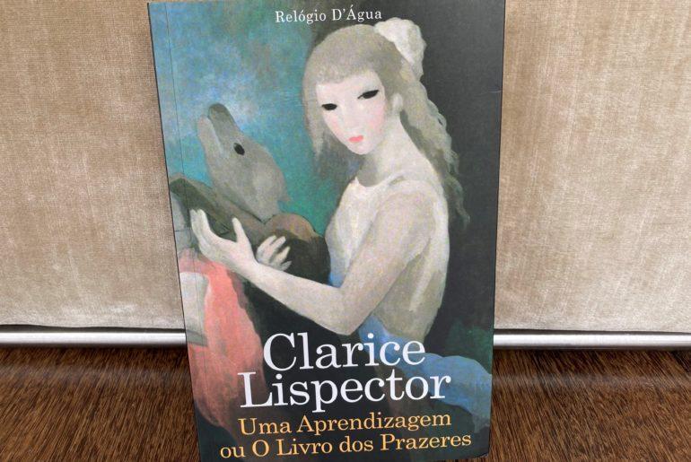 Uma Aprendizagem ou o Livro dos Prazeres, Clarice Lispector 5
