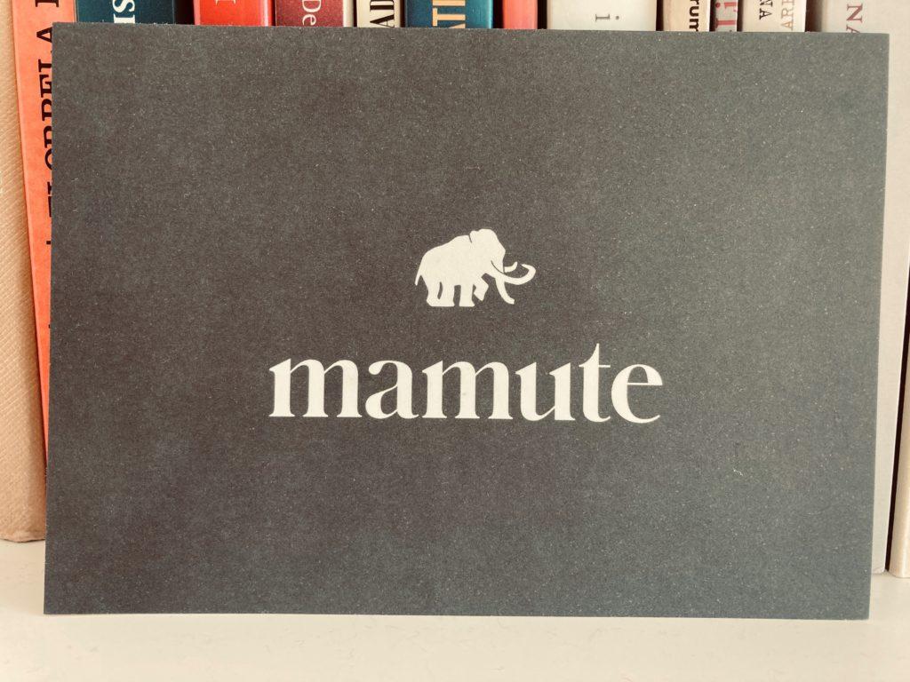 No bolso, trago um Mamute 4